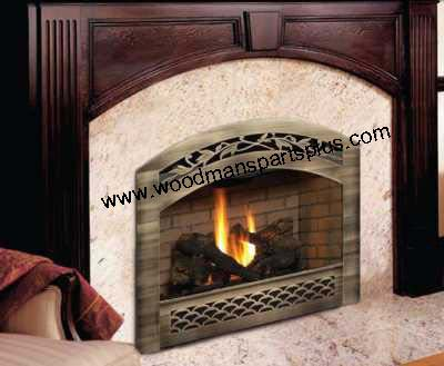 Pleasant Travis Industries 564 Ss Fireplace Download Free Architecture Designs Grimeyleaguecom