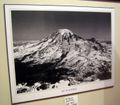 Mt. Rainier Black and White Poster