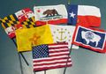 U.S. State Mini Flags - Choose from the List