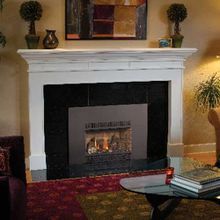FPX 31 DVI Small Fireplace Insert
