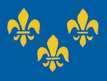 French Fleur De Lis Flag