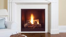 Onyx Direct Vent Gas Fireplace