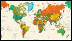 Tyvek Political World Map