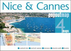Nice Cannes Popout Map