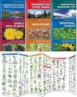 Pocket Naturalist Laminated Field Guides