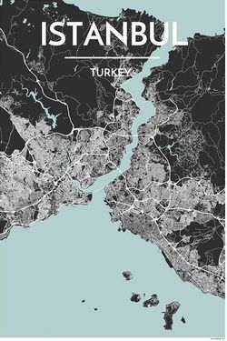 Istanbul map print istanbul wall map istanbul map print by point two gumiabroncs Images