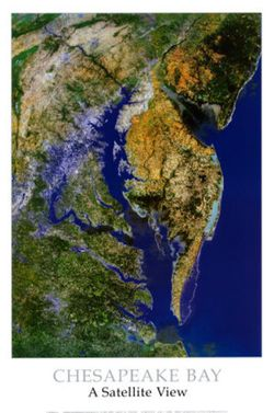 Chesapeake Bay Satellite Poster